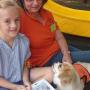 story-dogs-blog-header.fw